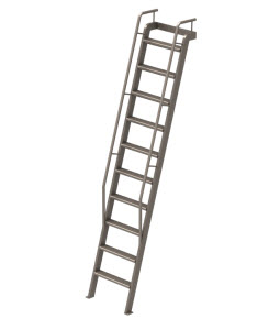 Illustration of a Library Ladder